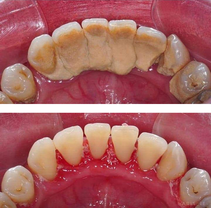 Royal Palm Beach, FL Dentist
